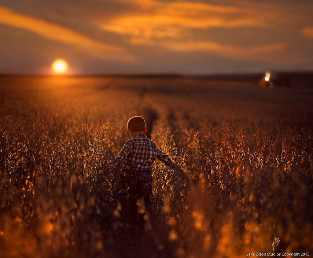 """""""Жизнь прожить - не поле перейти"""" - сочинение для школьников"""